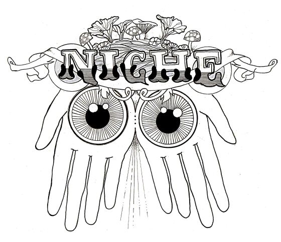 Quick logo for a promo for the Niche boys
